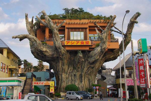 Tree House Restaurant, Naha Japan