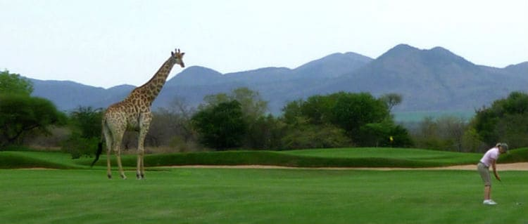 Leopard Creek Country Golf Course, South Africa
